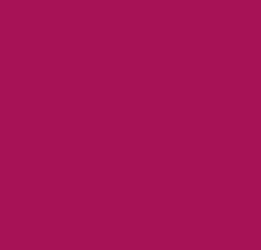 Burgandy - Suede Dye